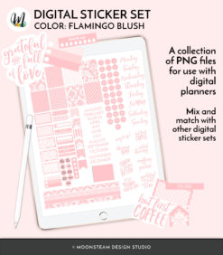 Flamingo Blush Digital Planner Stickers by Moonsteam Design Studio