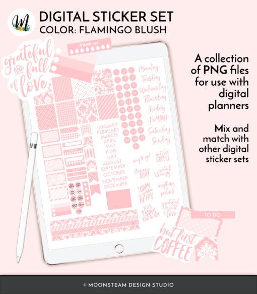 Flamingo Blush Digital Planner Stickers by Moonsteam Design Studio