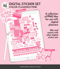 Flamingo Pink Digital Planner Stickers by Moonsteam Design Studio