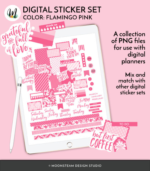 Flamingo Pink Digital Planner Stickers by Moonsteam Design Studio